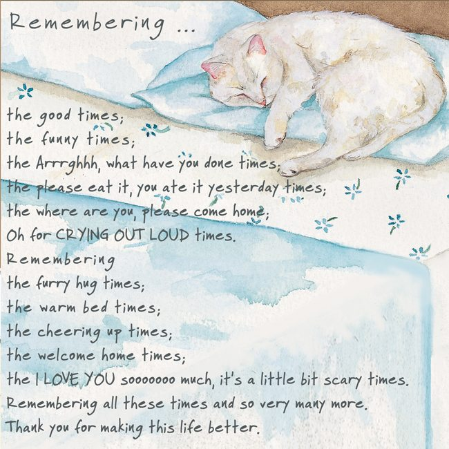 Remembrance Greeting Card Remember Cat The Little Dog