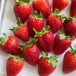 Chocolate Strawberry Bouquet The Little Epicurean