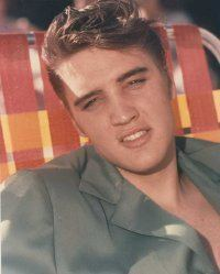 Elvis 1954 During Career Launch