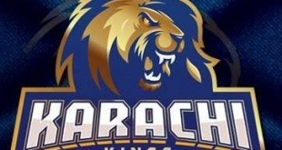 Karachi kings team logo in psl 2020 represent the karachi team and city of Karachi