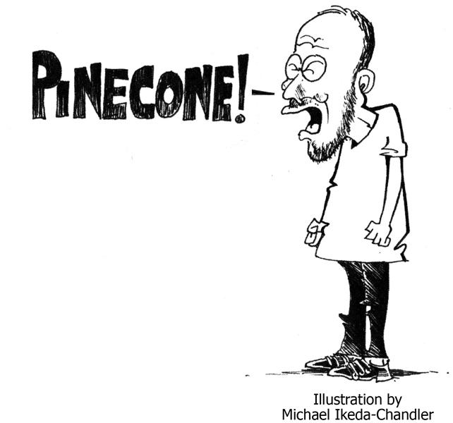 Pinecone84MIC