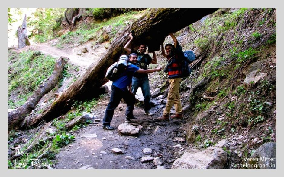 Fun and frolic by trekkers enroute to Kheerganga