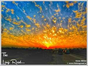 Evening sky Flower. www.thelongroad.in