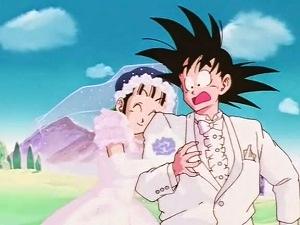 3 - episodio 153 il matrimonio tra Goku e Chichi (Dragon Ball)