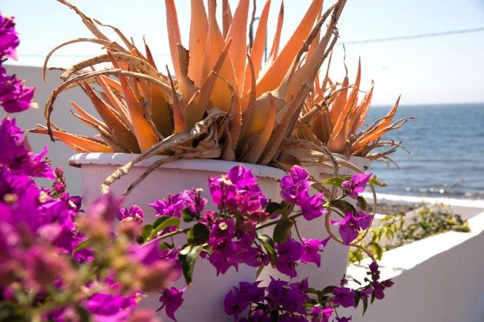 Playa-Quemada-Lanzarote-Spain-Spagna-Canarie-Canary-island-Photo-credit-by-Thelostavocado-(8)