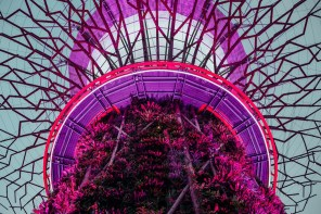 Gardens by the Bay e Marina Bay Sands a Singapore