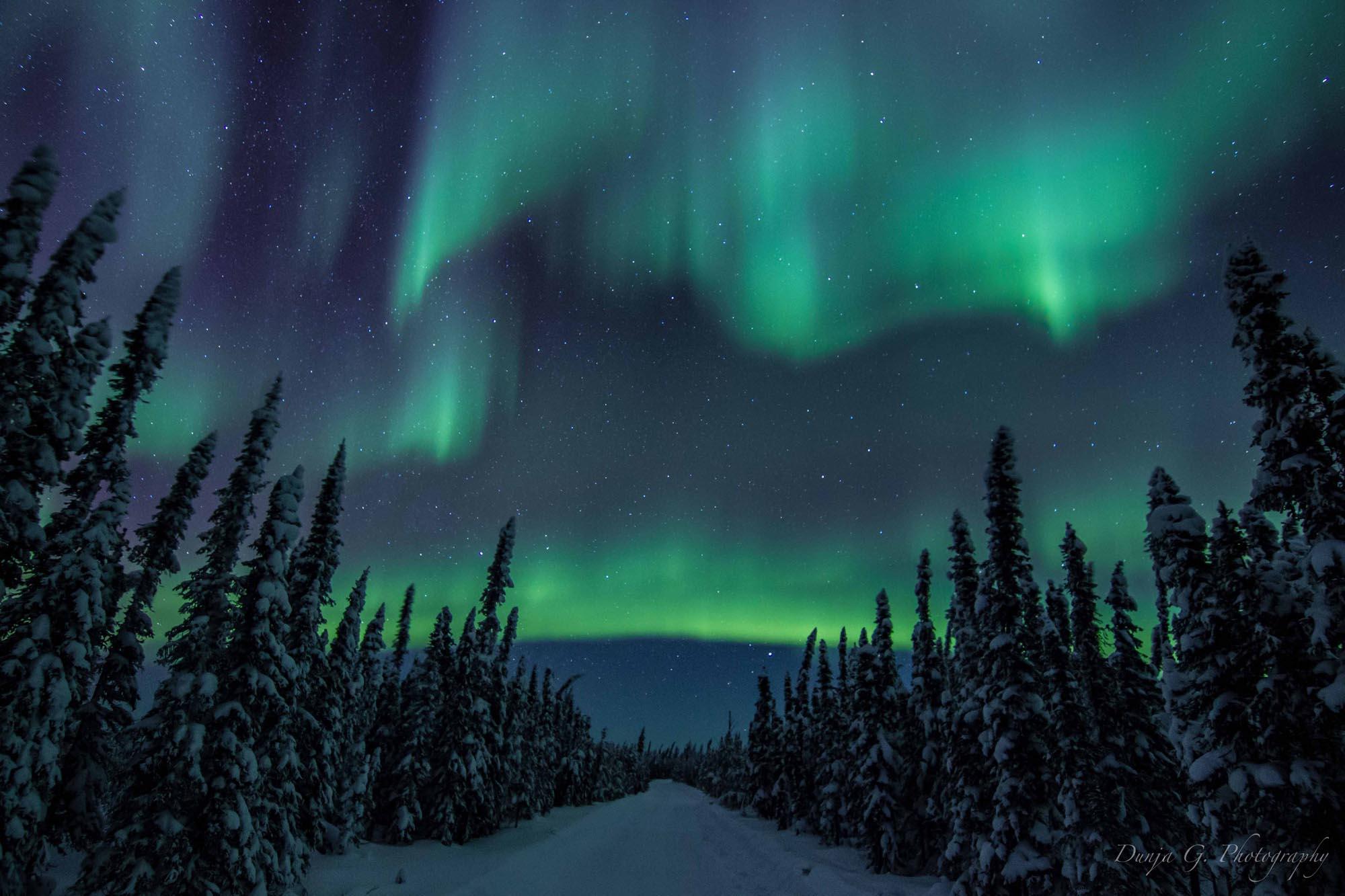 Beautiful Northern Lights