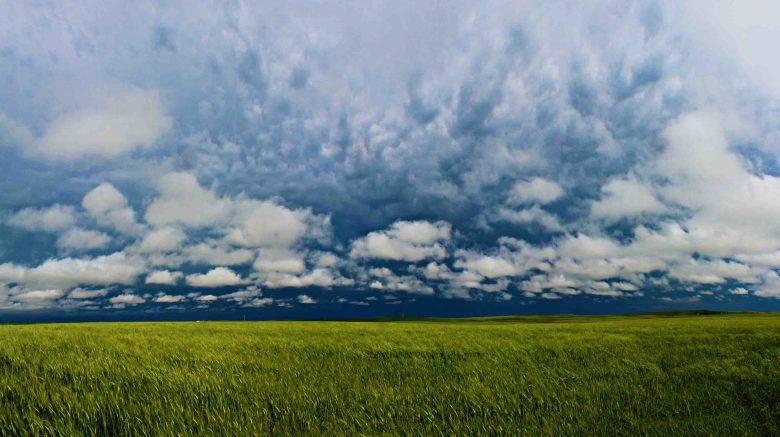 Stormy Saskatchewan Fields, Canada