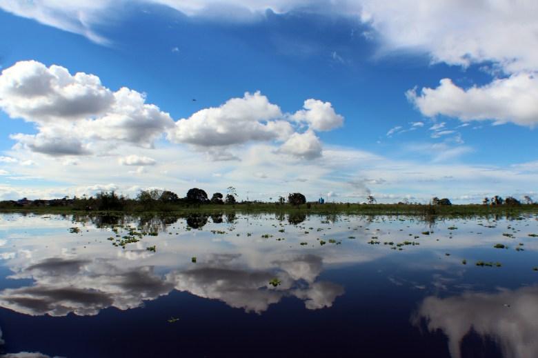 Amazon Black River