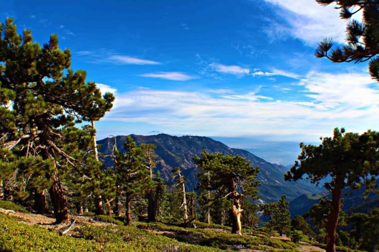Mount Baldy, United States
