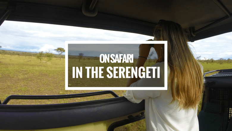 Safari in the Serengeti