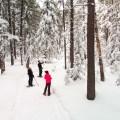 Snowshoeing in Cypress Hills Interprovincial Park