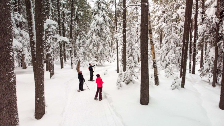 Snowshoeing in Cypress Hills Interprovincial Park