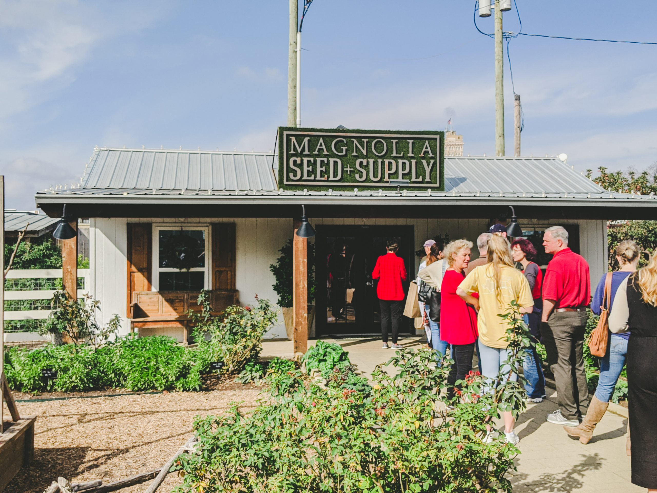 magnolia seed + supply store