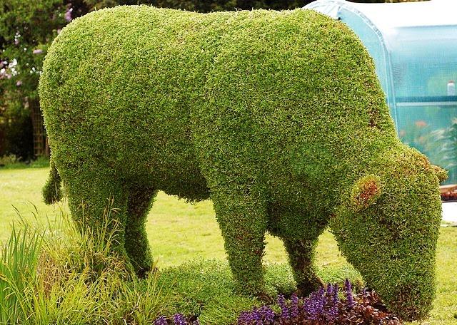 touro topiary