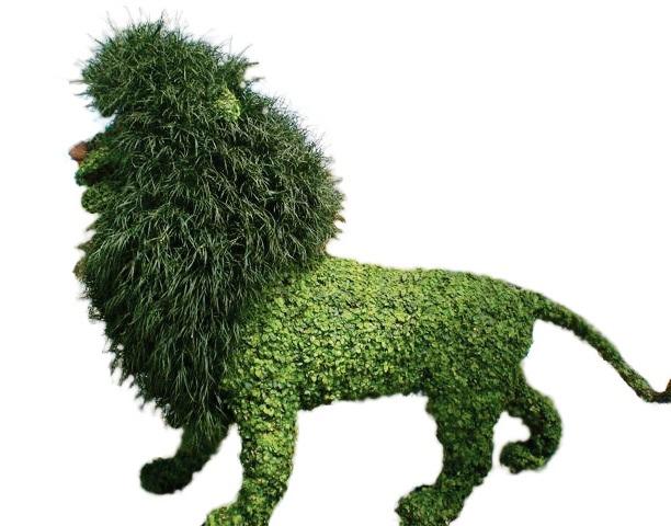 leão topiary