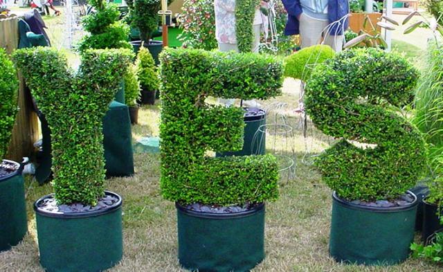 logotipo topiary