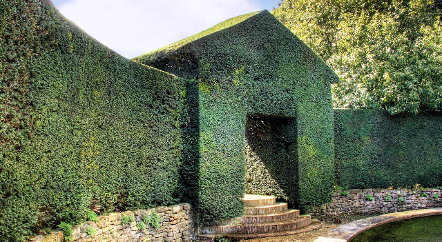 parede topiary