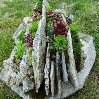 Creative DIY Gardening Idea # 13: Succulent Planter