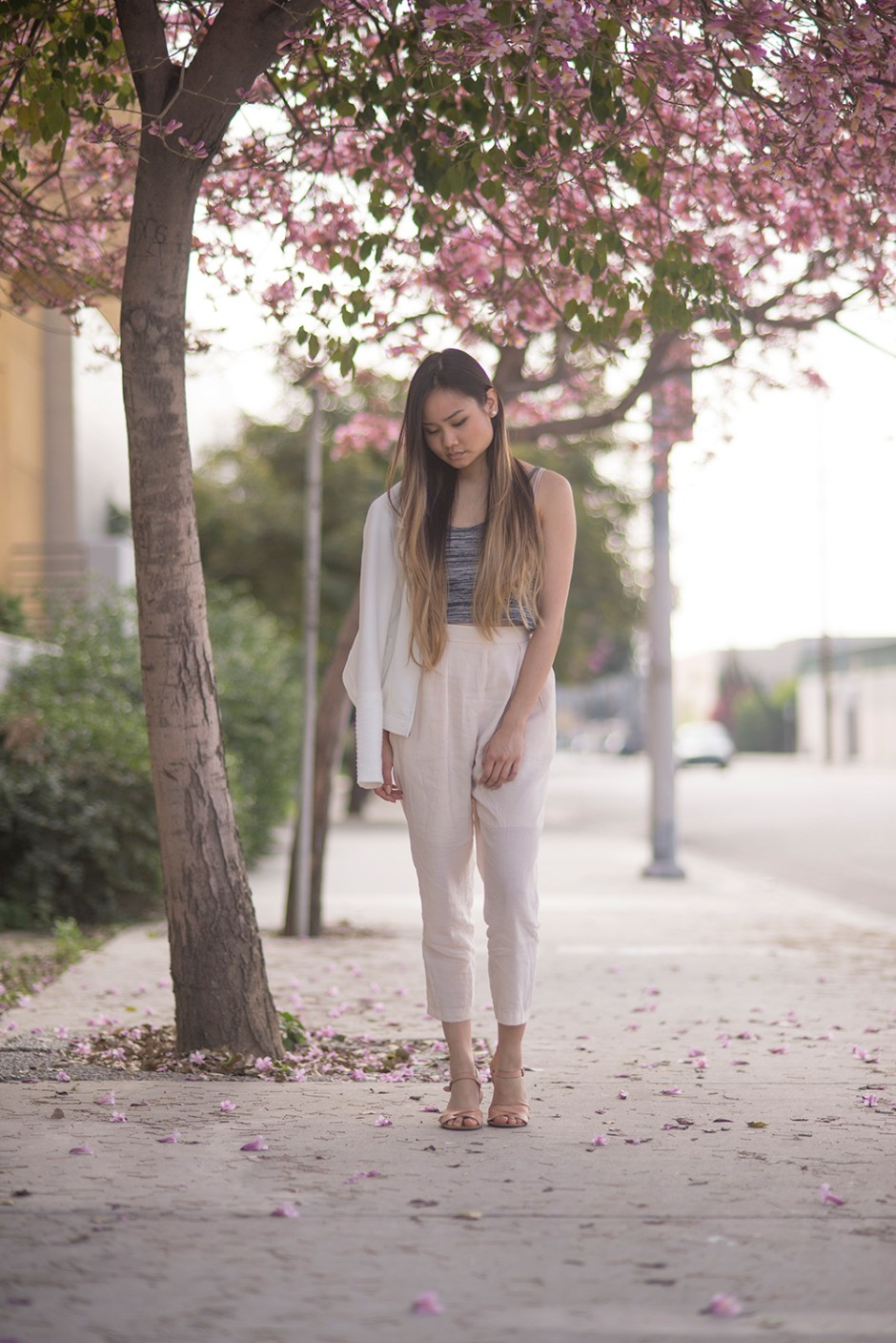 Cherry Blossoms & Loose Luxe