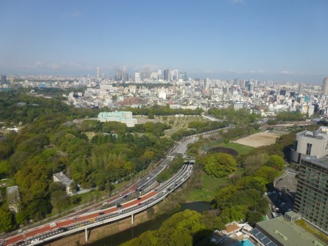 New Otani Tokyo - View from rooftop
