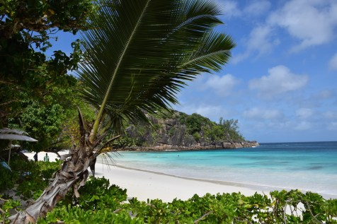 Four Seasons Seychelles - Resort white sand beach