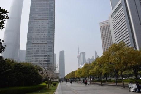 Tour of China - Shanghai Pudong, Century avenue