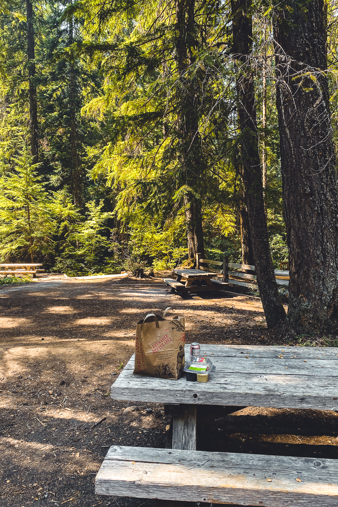 Picnic Tables Near Whitehorse Falls in Umpqua National Forest