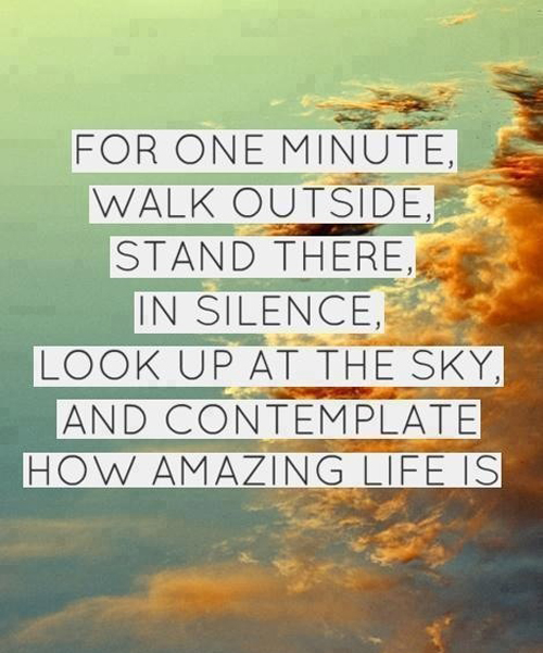 for one minute contemplate how amazing life is