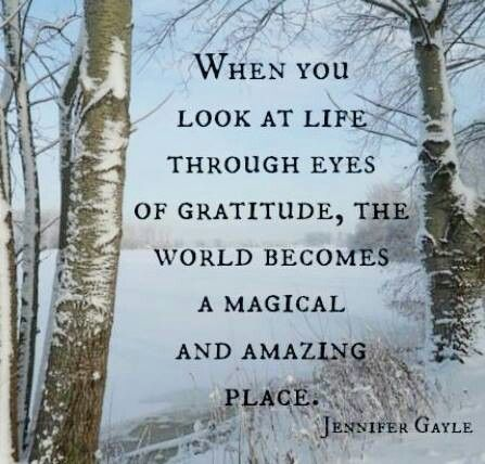 when you have gratitude the world becomes magical