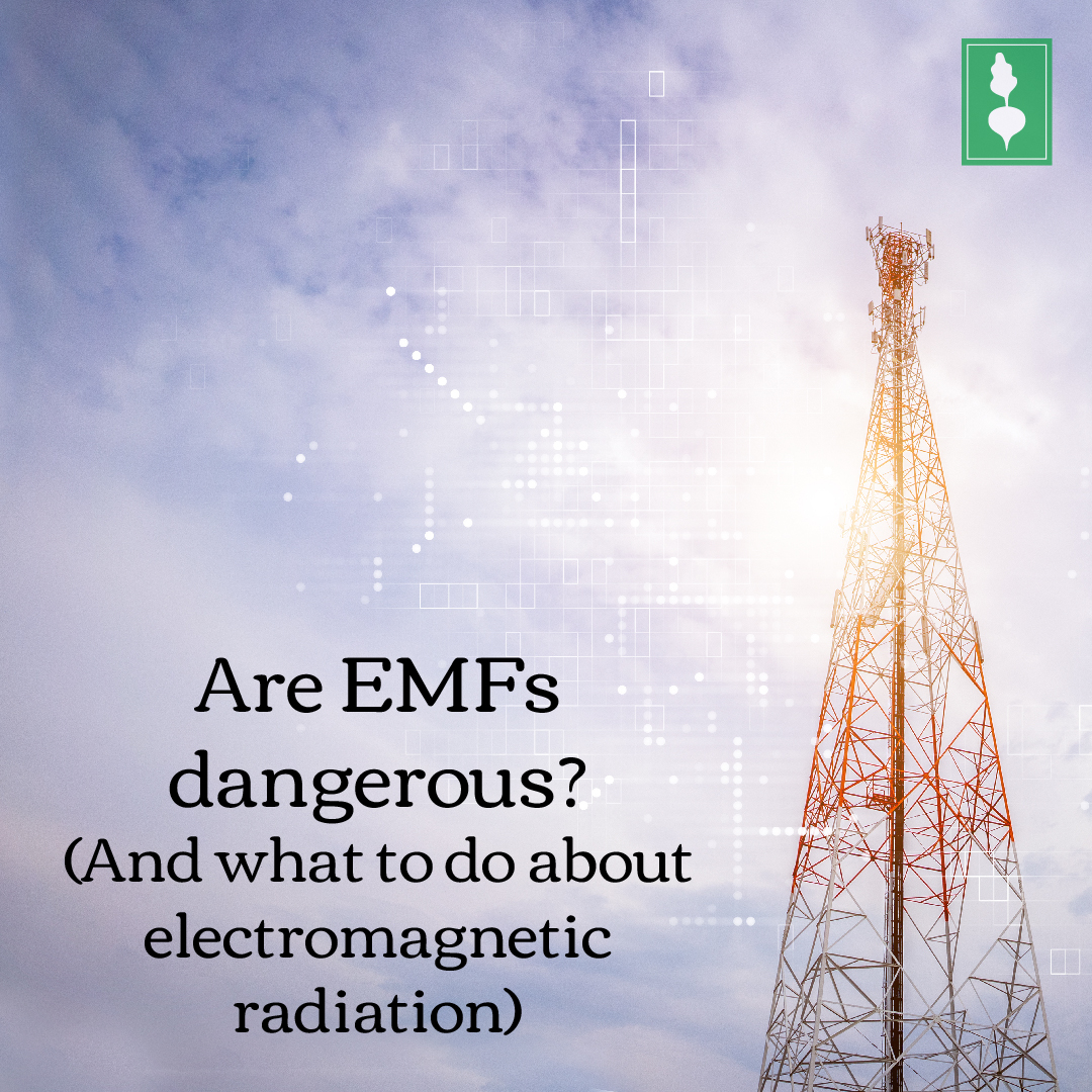 Are EMFs dangerous? (And what to do about electromagnetic radiation)