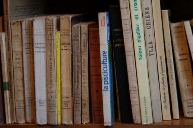 Librairie Salon de Thé, Bécherel, France