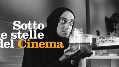 cinema aperto bologna