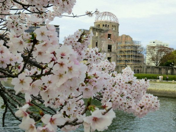 sakura-peace-park-hiroshima_3019