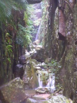 A small waterfall in the kloof