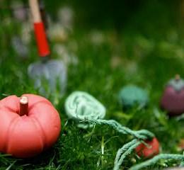 Tiny Carrots and veggies for your Fairy Garden : www.theMagicOnions.com