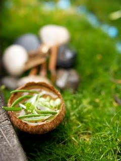 Fairy Feast, herb stew in a little acorn cap cup