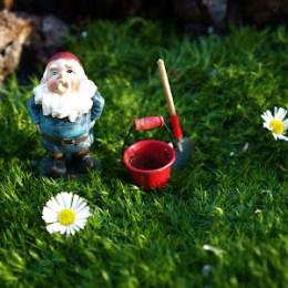 Our Fairy Garden – 2012