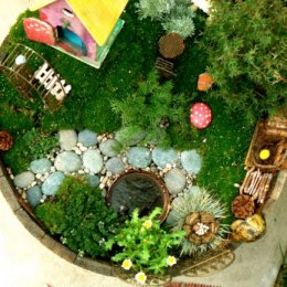 How to make a Fairy Garden that Children will Love.