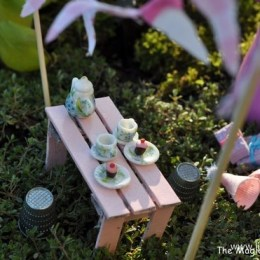 Fairy Garden Feature :: 2013 :: Nine