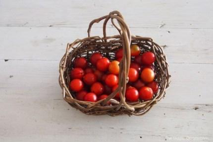 Super Simple Tomato Jam Recipe : The Magic Onions : www.theMagicOnions.com