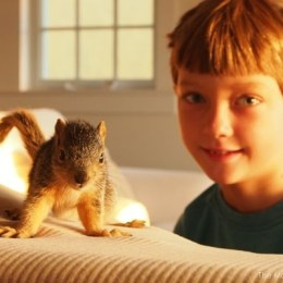 Meet Timone, Our Baby Squirrel