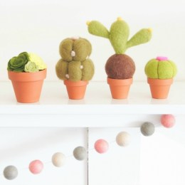 Felted Succulent Delights