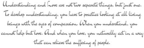 Understanding and Love are not two separate things, but just one. To develop understanding, you have to practice looking at all living beings with the eyes of compassion. When you understand, you cannot help but love. And when you love, you naturally act in a way that can relieve the suffering of people.