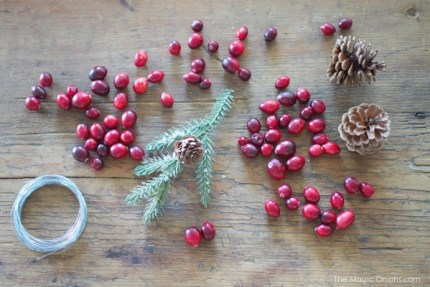 Cranberry Hearts Christmas Ornaments :: DIY Tutorials :: www.theMagicOnions.com