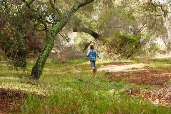 The Magic Onions -- www.theMagic Onions.com -- Nature Walk -  - 25