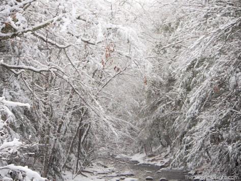 Snow in Wilton, New Hampshire -- www.theMagicOnions.com