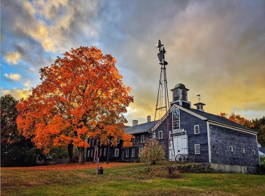 Foliage and barn