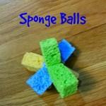 Sponge Balls and Cicada Killers