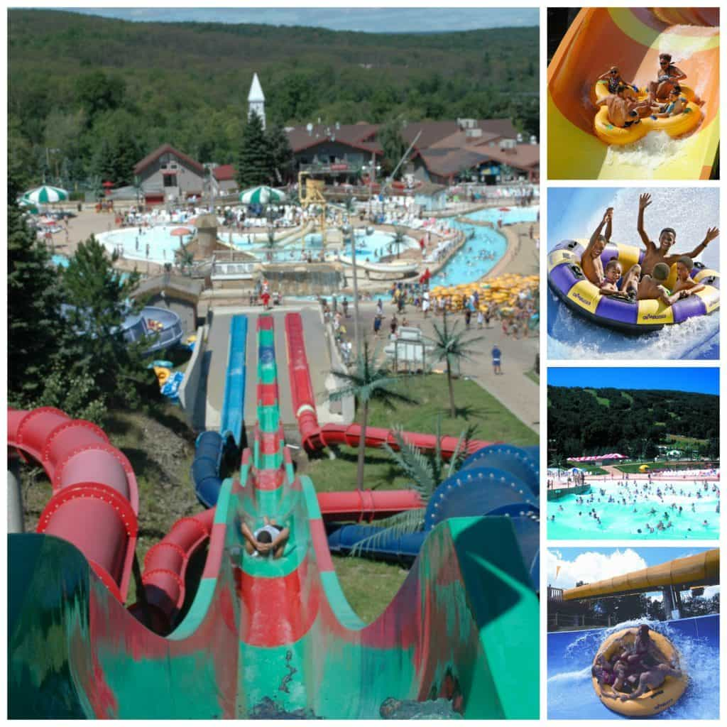 camelbeach Collage